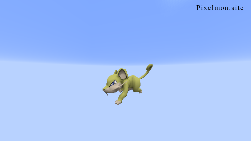 Shiny Rattata